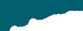 Novimotus Logo